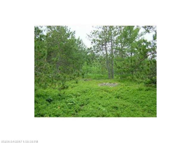 Lot 53 Skyline Pines Dr, Bar Harbor, ME 04609 (MLS #1324685) :: Acadia Realty Group