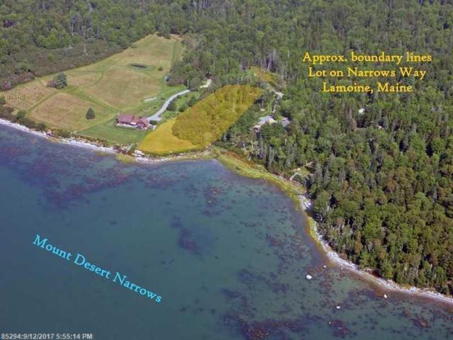 WF Lot Narrows Way, Lamoine, ME 04605 (MLS #1326014) :: Acadia Realty Group