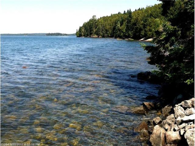Lot 55.3 Raft Cove Rd, Trescott Twp, ME 04652 (MLS #1326713) :: Acadia Realty Group