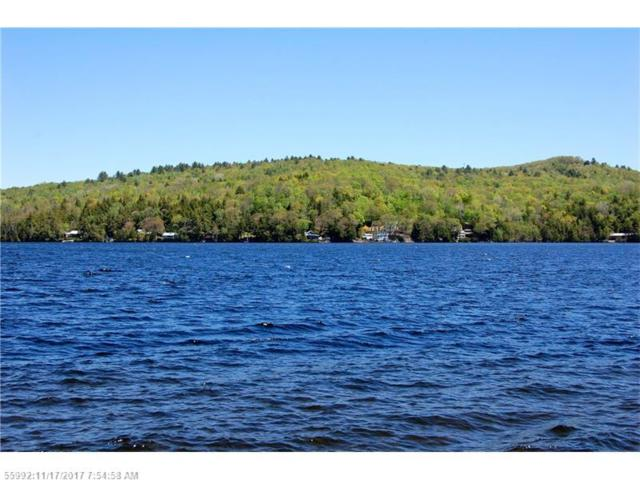 Map 7 Lot 1-4 Pine Bluff Dr, Embden, ME 04958 (MLS #1332503) :: DuBois Realty Group