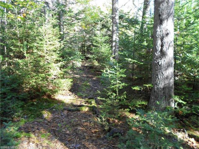 345 Justin Ln, Gouldsboro, ME 04607 (MLS #1332725) :: Acadia Realty Group