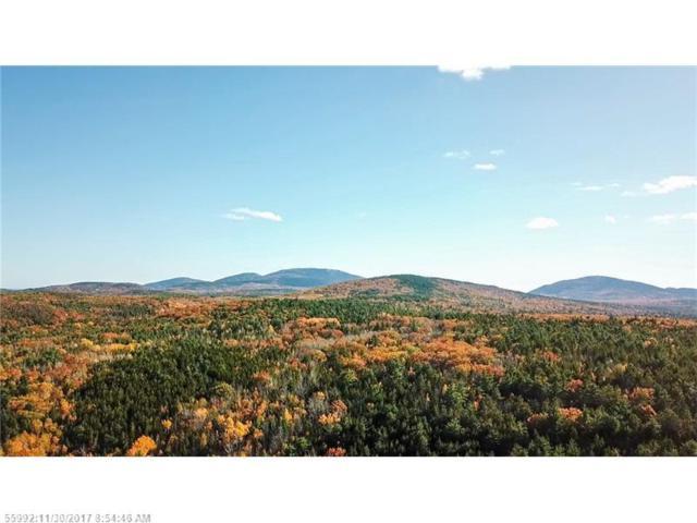 80 Farm View Dr, Bar Harbor, ME 04609 (MLS #1333699) :: Acadia Realty Group