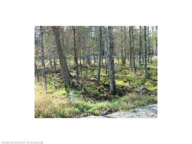 Lot 8 Island Woods Rd, Bar Harbor, ME 04609 (MLS #1334829) :: Acadia Realty Group