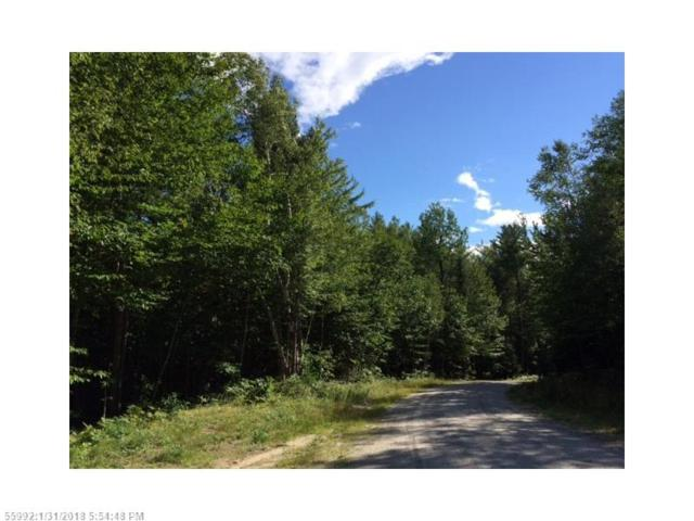 Lot #4 Nordic Knoll Rd, Newry, ME 04261 (MLS #1337555) :: DuBois Realty Group