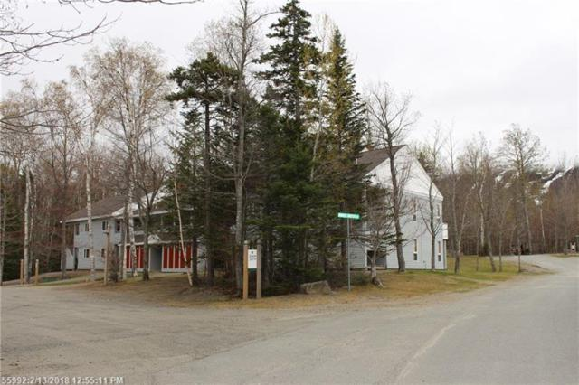 2668 Winterbrook Ln 2668, Carrabassett Valley, ME 04947 (MLS #1338539) :: Herg Group Maine