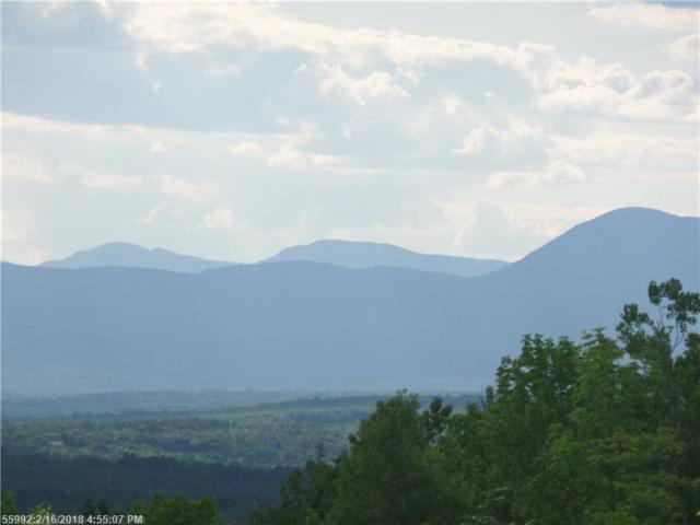 Lot 30 Hampshire Hill Rd, New Sharon, ME 04955 (MLS #1338880) :: DuBois Realty Group