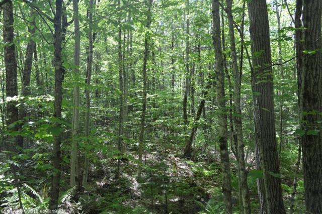 Lot 58-30-4 Summit Rd, Gray, ME 04039 (MLS #1339032) :: DuBois Realty Group