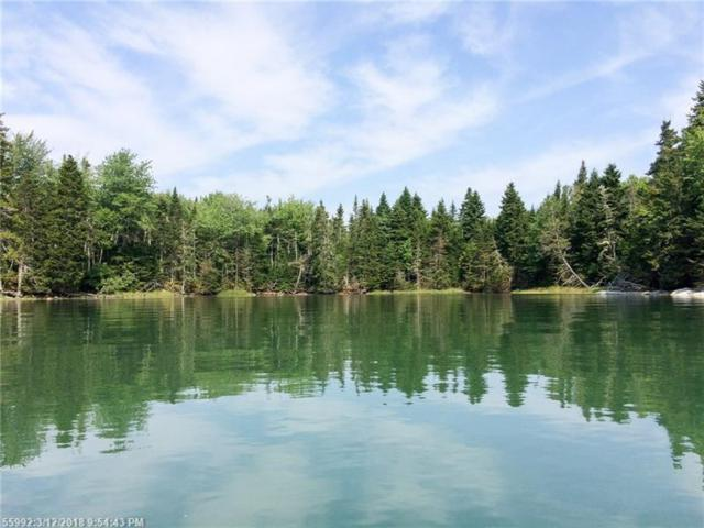 Lot 7 Point Rd, Steuben, ME 04680 (MLS #1341318) :: DuBois Realty Group