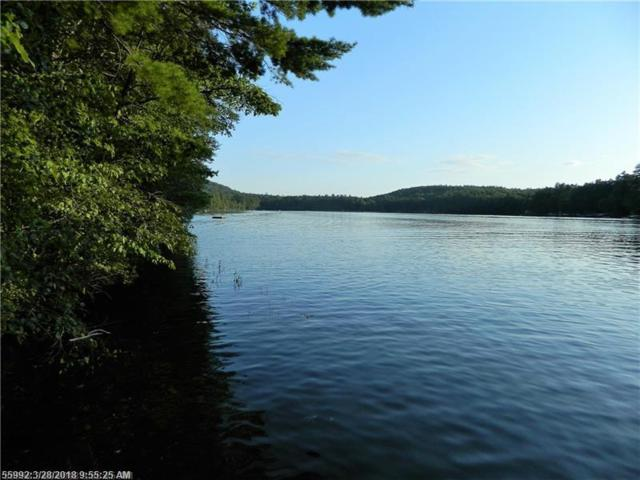 Lot 1 Coffee Pond Rd, Casco, ME 04015 (MLS #1343027) :: DuBois Realty Group