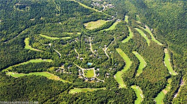 6004 Eagle Ln, Carrabassett Valley, ME 04947 (MLS #1348584) :: Herg Group Maine
