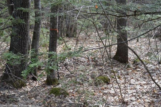 Lot 20 Basin Rd, Fayette, ME 04349 (MLS #1349248) :: DuBois Realty Group