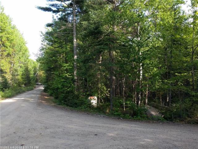 Lot 42 Lakeview Rd, Penobscot, ME 04476 (MLS #1354028) :: DuBois Realty Group