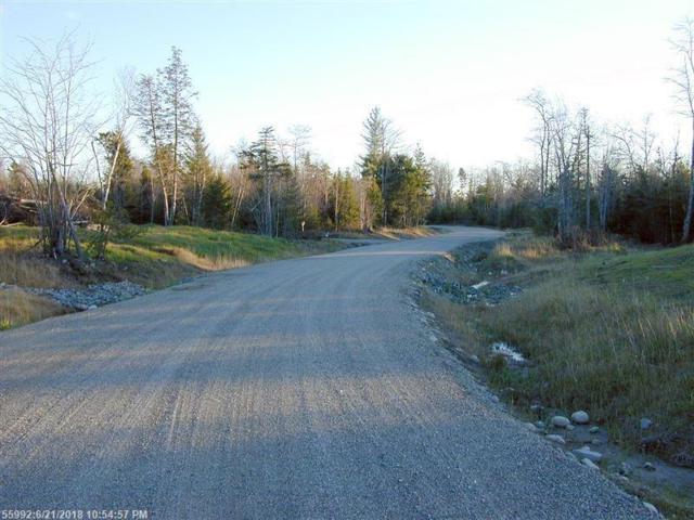 Lot 6 Woodland Dr, Trenton, ME 04605 (MLS #1357471) :: DuBois Realty Group