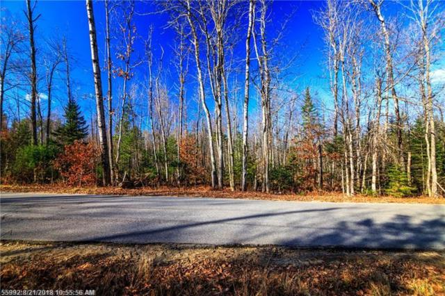 0 Town Farm Rd, Hartford, ME 04220 (MLS #1366411) :: DuBois Realty Group