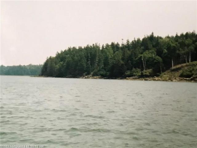 Lot #73 Nepp Point Rd, Roque Bluffs, ME 04654 (MLS #1373611) :: DuBois Realty Group