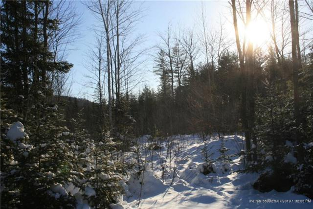 Lot 37 King Pine Drive, Newry, ME 04261 (MLS #1413245) :: Your Real Estate Team at Keller Williams