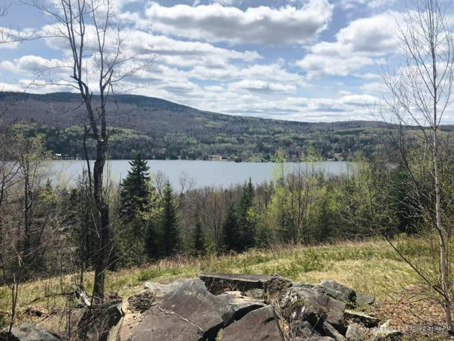 Lot 9D Overlook Road, Sandy River Plt, ME 04970 (MLS #1415984) :: Your Real Estate Team at Keller Williams
