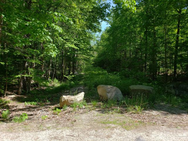0 Libby Road, Casco, ME 04015 (MLS #1419760) :: Your Real Estate Team at Keller Williams