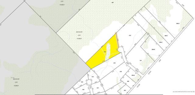 Lot 13 Tripp Drive, Bangor, ME 04401 (MLS #1421699) :: Your Real Estate Team at Keller Williams