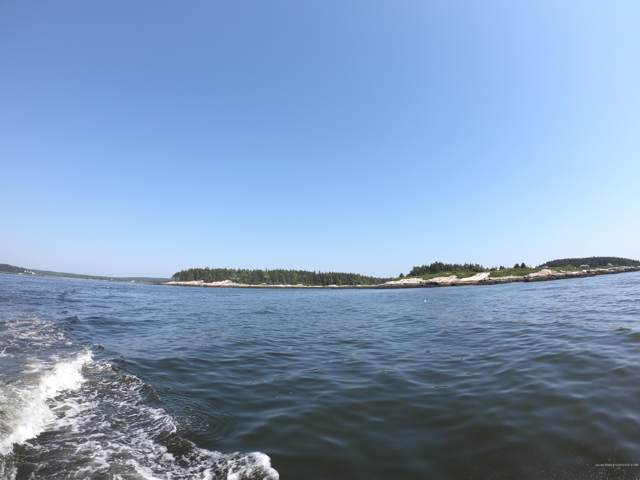 Lot 3 Big Wood Island Island, Phippsburg, ME 04562 (MLS #1428993) :: Your Real Estate Team at Keller Williams