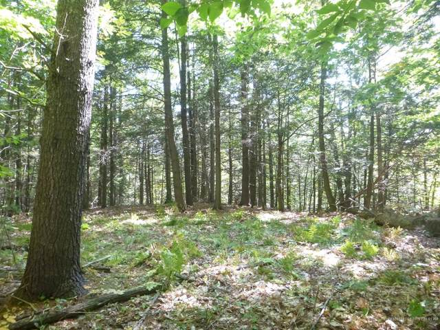 Lot 2 Deer Run Drive, Cumberland, ME 04021 (MLS #1435664) :: Your Real Estate Team at Keller Williams