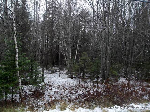 Lot 107 Us Route 1, Waite, ME 04492 (MLS #1439365) :: Your Real Estate Team at Keller Williams