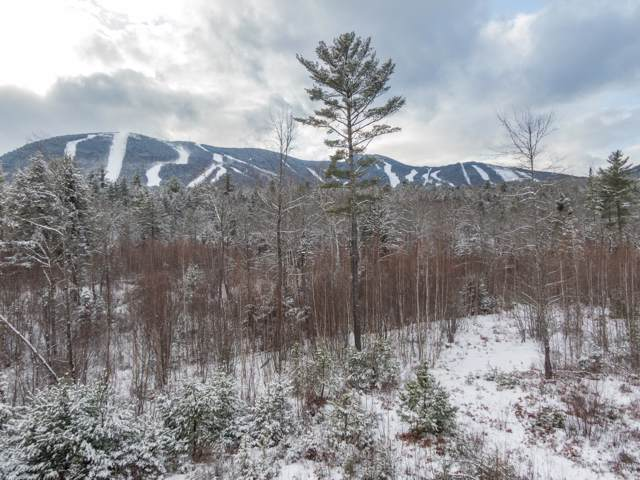 Lot 41A King Pine Drive, Newry, ME 04261 (MLS #1441148) :: Your Real Estate Team at Keller Williams