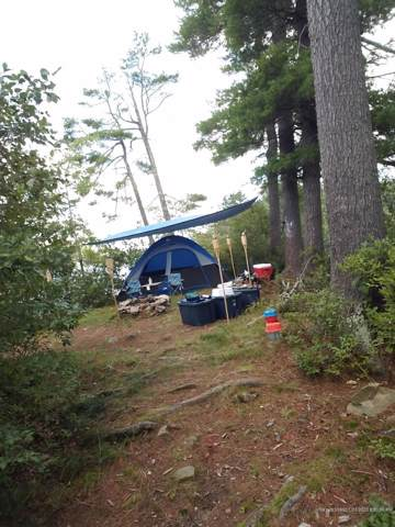 0 Small Island, Readfield, ME 04355 (MLS #1441707) :: Your Real Estate Team at Keller Williams