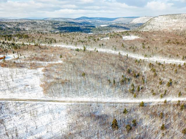 Lot 22 Ridgeview Road, Harrison, ME 04040 (MLS #1442157) :: Your Real Estate Team at Keller Williams
