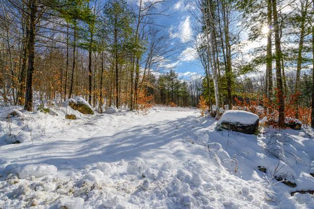 Lot 1 Ridgeview Road, Harrison, ME 04040 (MLS #1442807) :: Your Real Estate Team at Keller Williams