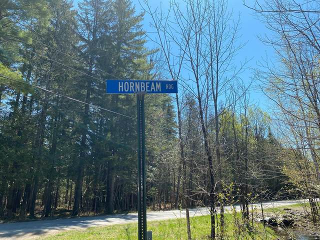 Map 202 Lot 104 Hornbeam Ridge Road, Dexter, ME 04930 (MLS #1451924) :: Keller Williams Realty