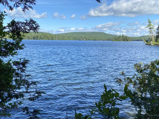 Lot 1 Off North Shore Road, Lake View Plt, ME 04481 (MLS #1461420) :: Keller Williams Realty