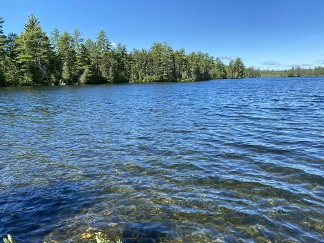 Lot 2 Off North Shore Road, Lake View Plt, ME 04481 (MLS #1461453) :: Keller Williams Realty
