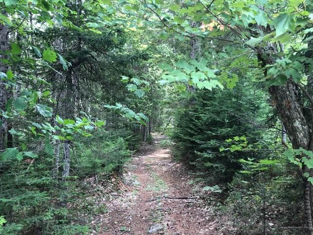 102 Farms Edge Road Road, Sullivan, ME 04664 (MLS #1463307) :: Keller Williams Realty