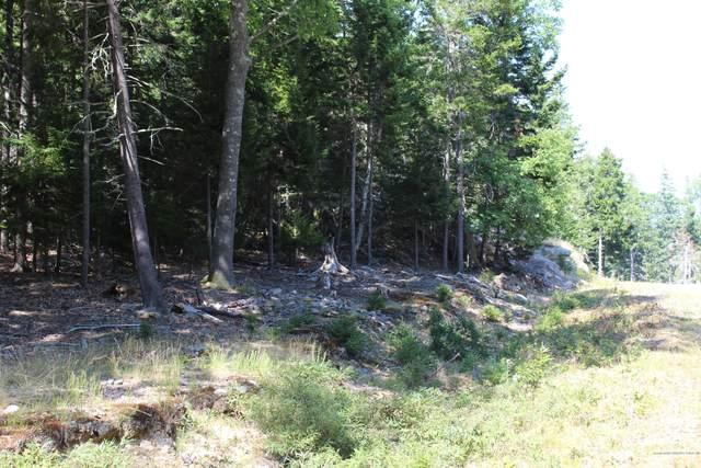 22 Warren Point Drive, Deer Isle, ME 04627 (MLS #1463979) :: Keller Williams Realty