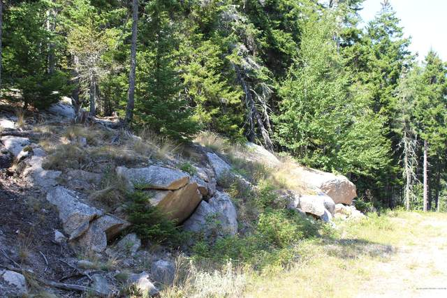 22 Warren Point Drive, Deer Isle, ME 04627 (MLS #1463981) :: Keller Williams Realty