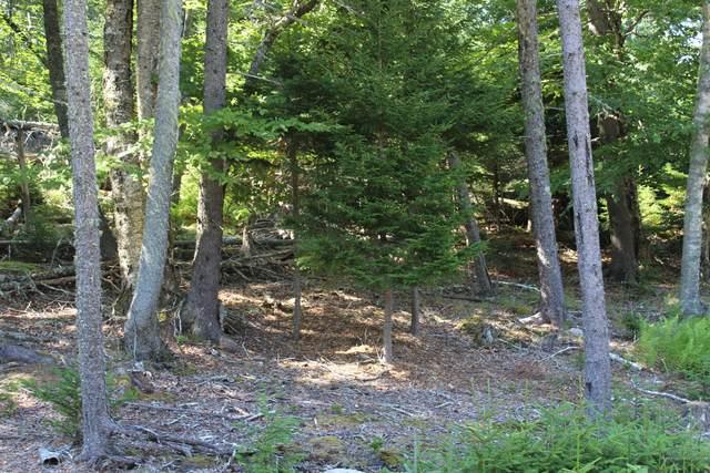 22 Warren Point Drive, Deer Isle, ME 04627 (MLS #1463983) :: Keller Williams Realty