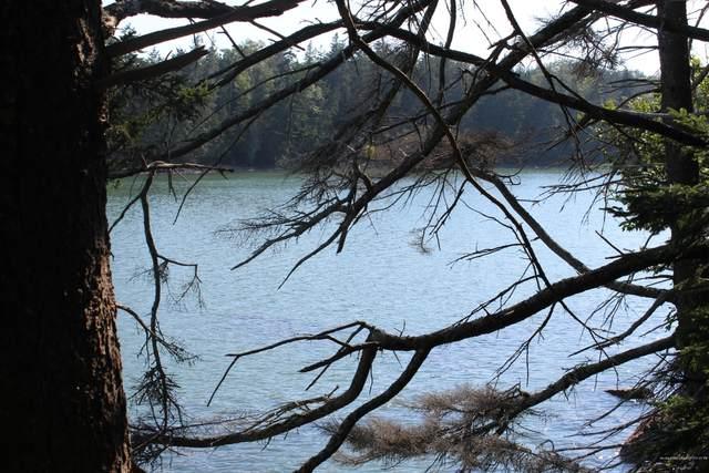 22 Warren Point Drive, Deer Isle, ME 04627 (MLS #1463988) :: Keller Williams Realty