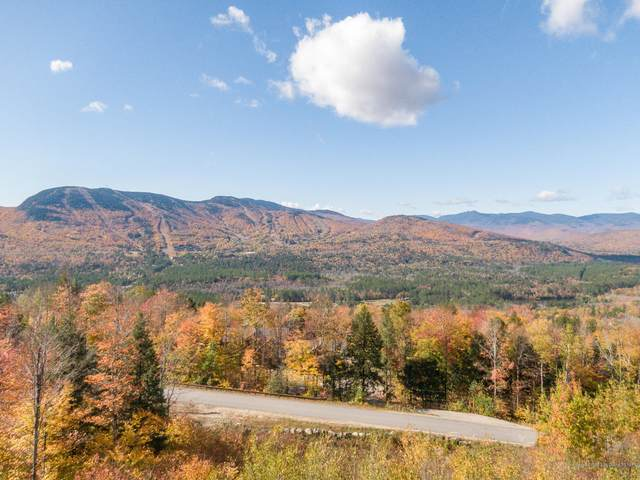 Lot 41 Appalachian Drive, Newry, ME 04261 (MLS #1472196) :: Keller Williams Realty