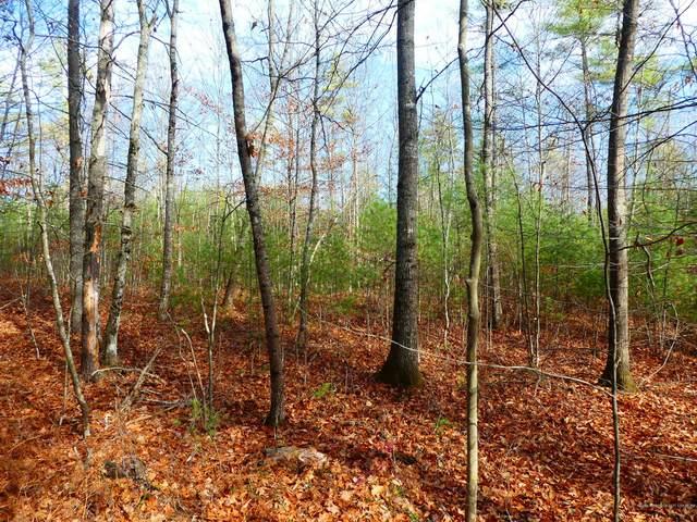 Lot 2 New Dam Road, Waterboro, ME 04061 (MLS #1475199) :: Keller Williams Realty