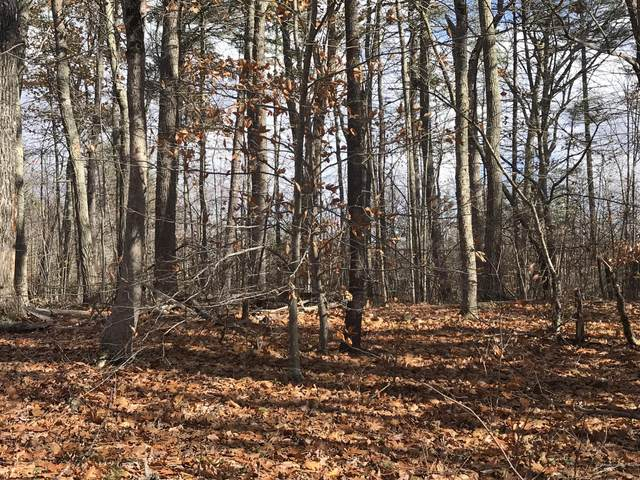 Lot 0 Shore Road, Raymond, ME 04071 (MLS #1475244) :: Keller Williams Realty
