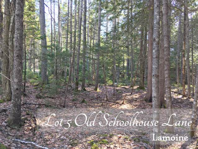 Lot 5 Old Schoolhouse Lane, Lamoine, ME 04605 (MLS #1482931) :: Keller Williams Realty