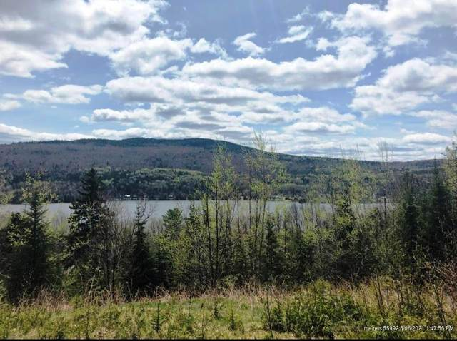 9D Overlook Road, Sandy River Plt, ME 04970 (MLS #1483681) :: Keller Williams Realty