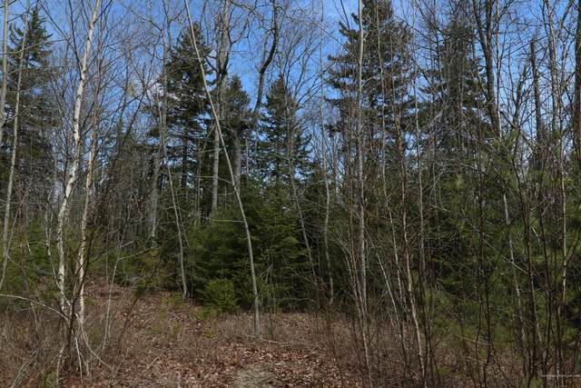Lot 6 Wendall Woods Lane, Blue Hill, ME 04614 (MLS #1488890) :: Keller Williams Realty