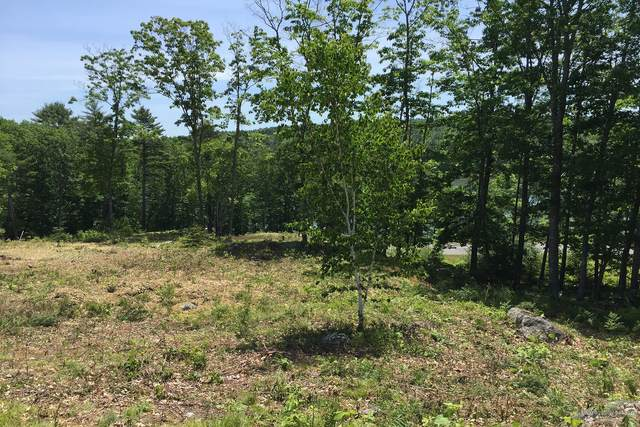 Lot 15 River Point Road, Wiscasset, ME 04578 (MLS #1492582) :: Linscott Real Estate