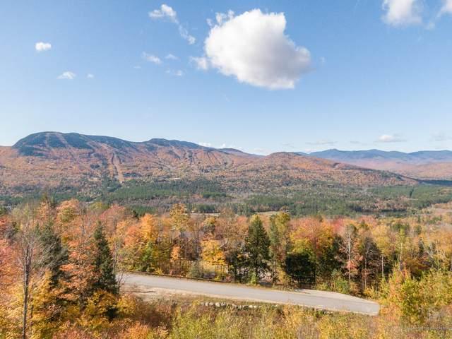 Lot 41 Appalachian Drive, Newry, ME 04261 (MLS #1499734) :: Linscott Real Estate