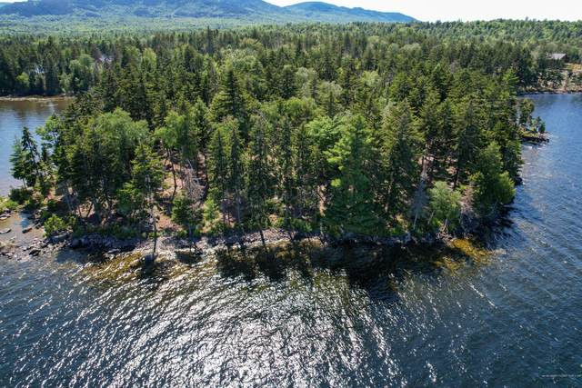 TBD Mountain View Rd, Big Moose Twp, ME 04442 (MLS #1500210) :: Linscott Real Estate