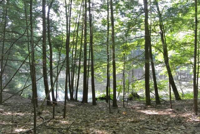0 Country Lane, Waterboro, ME 04087 (MLS #1512649) :: Linscott Real Estate