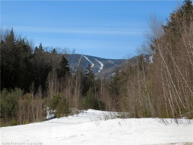 Lot 69 Douglas Rd, Newry, ME 04261 (MLS #1300059) :: DuBois Realty Group
