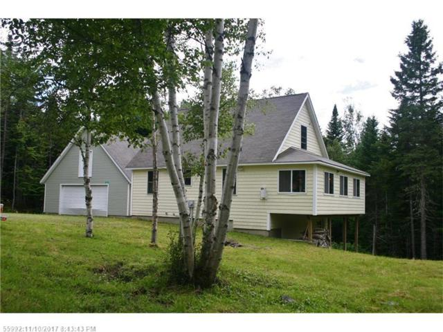 25 Aerie Trl, Sandy River Plt, ME 04970 (MLS #1311230) :: DuBois Realty Group